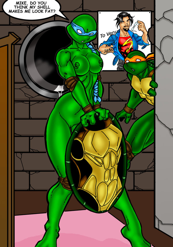 de ninja venus turtles milo My dad the rock star